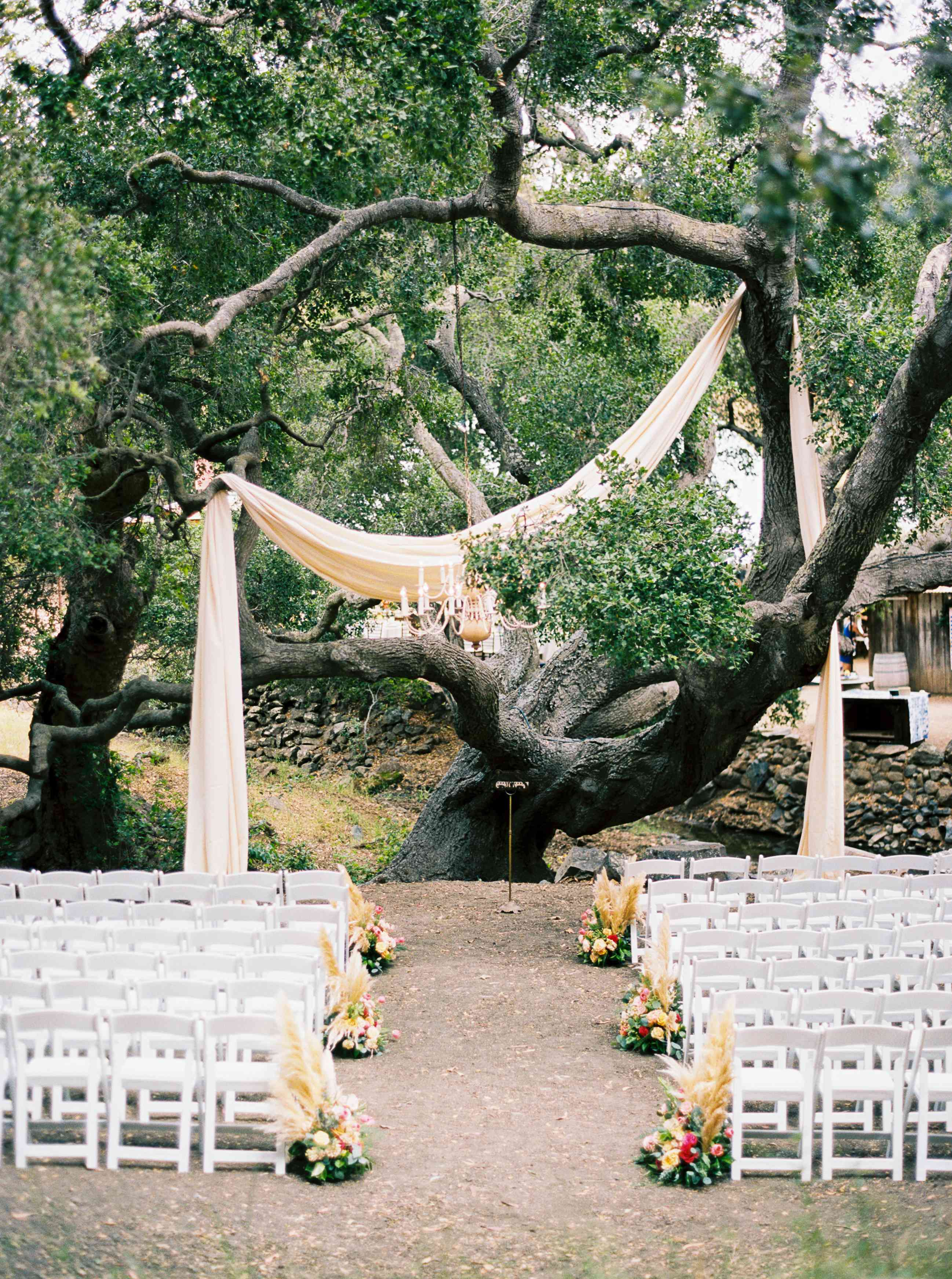 Wedding ceremony in front of large tree