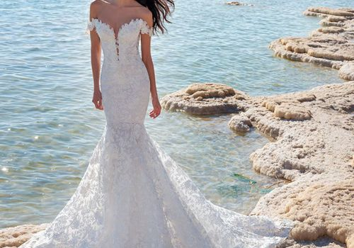 Model on beach in off-the-shoulder lace trumpet gown