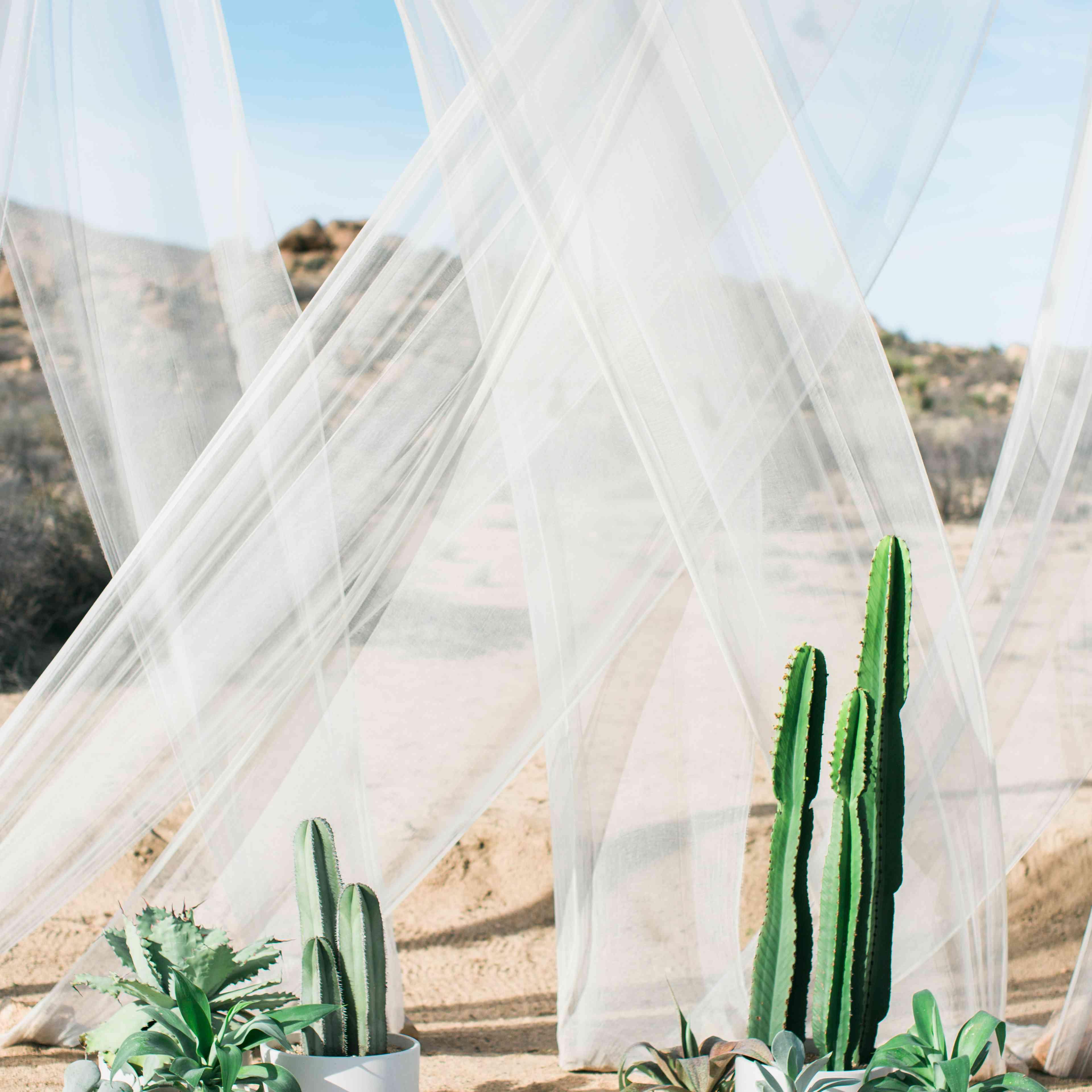 Cactus-Decorated Ceremony Backdrop