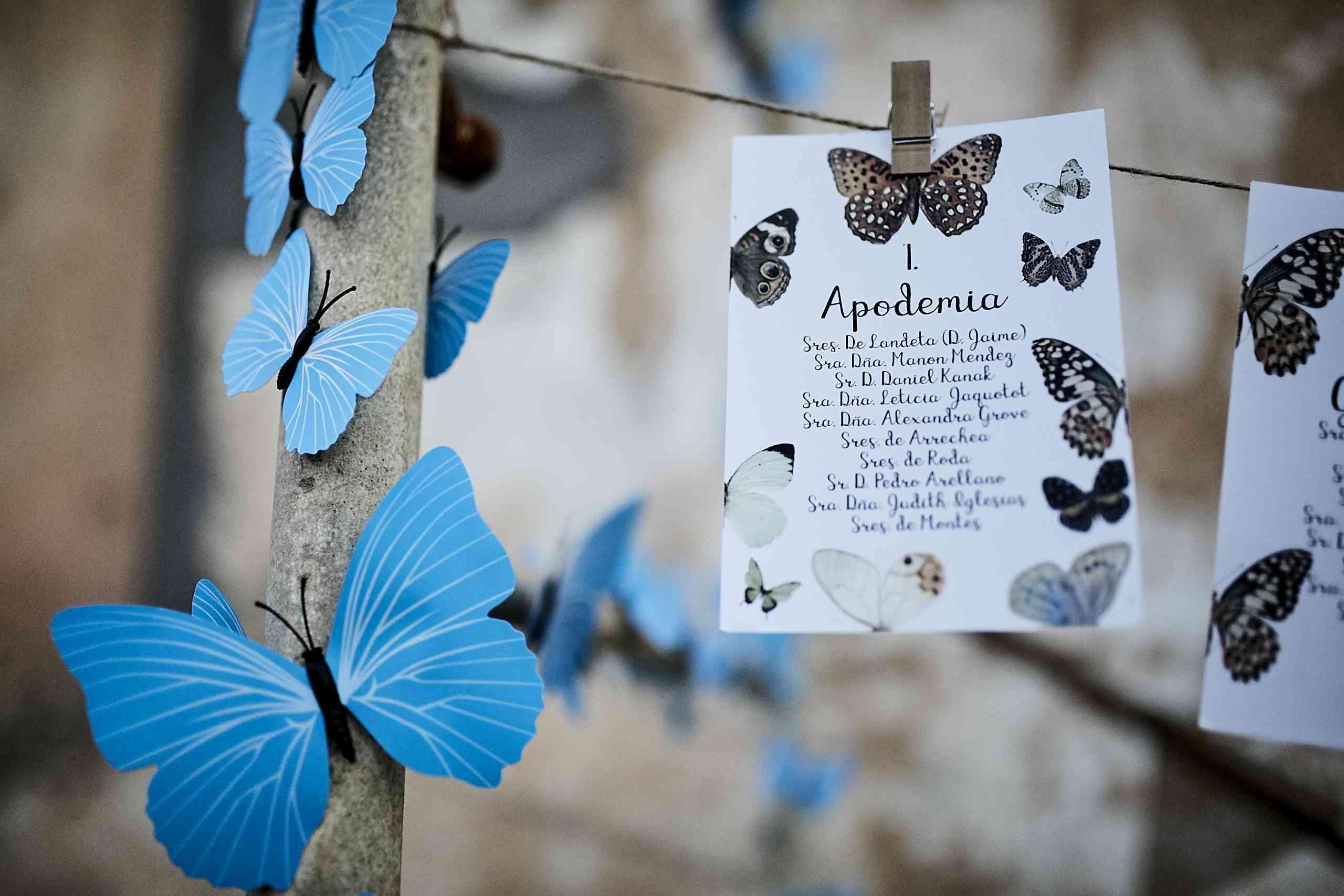 <p>butterfly escort cards</p><br><br>