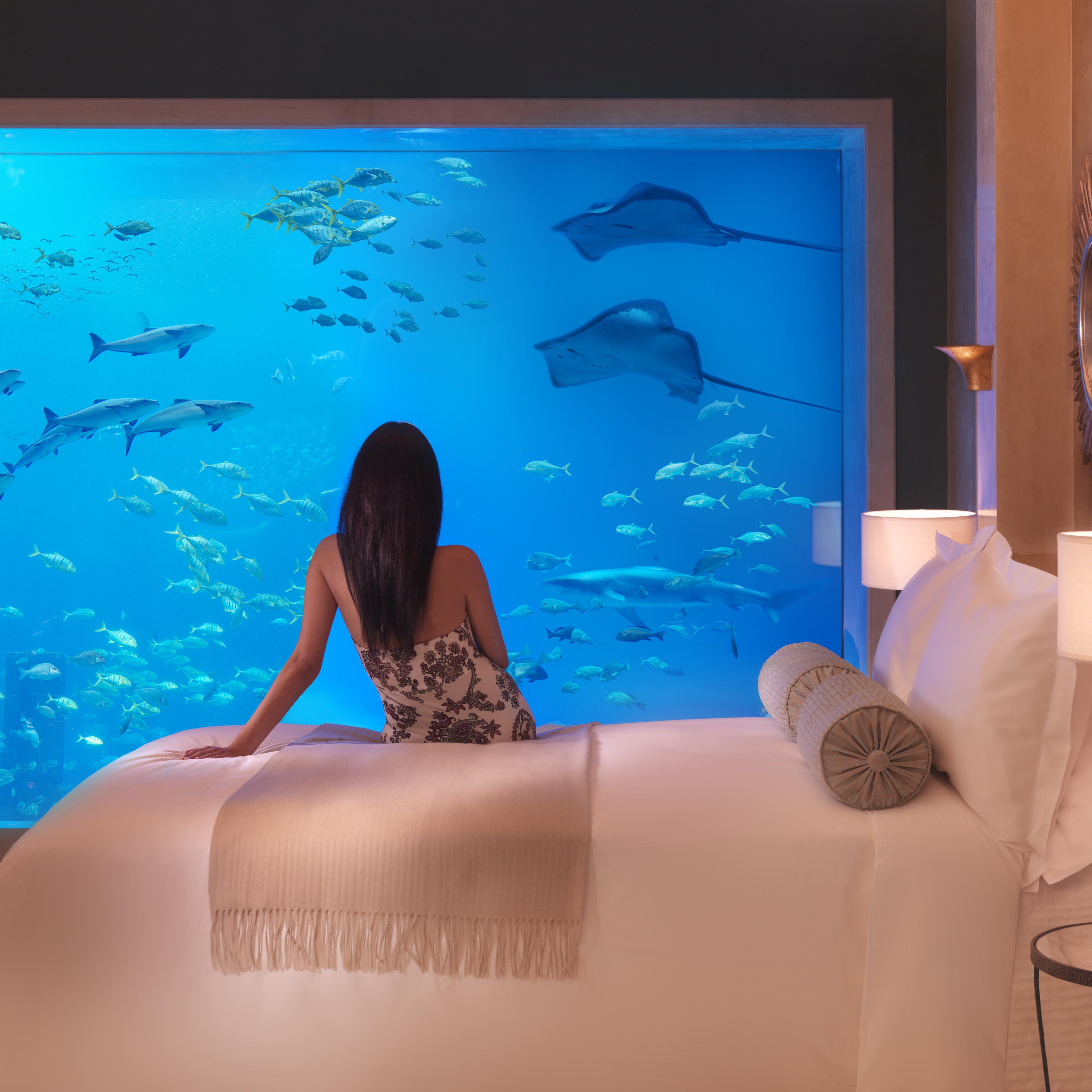 10 Underwater Hotels Resorts For An Unforgettable Honeymoon