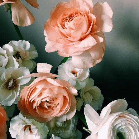 Wedding Flowers & Bouquet Ideas   Brides