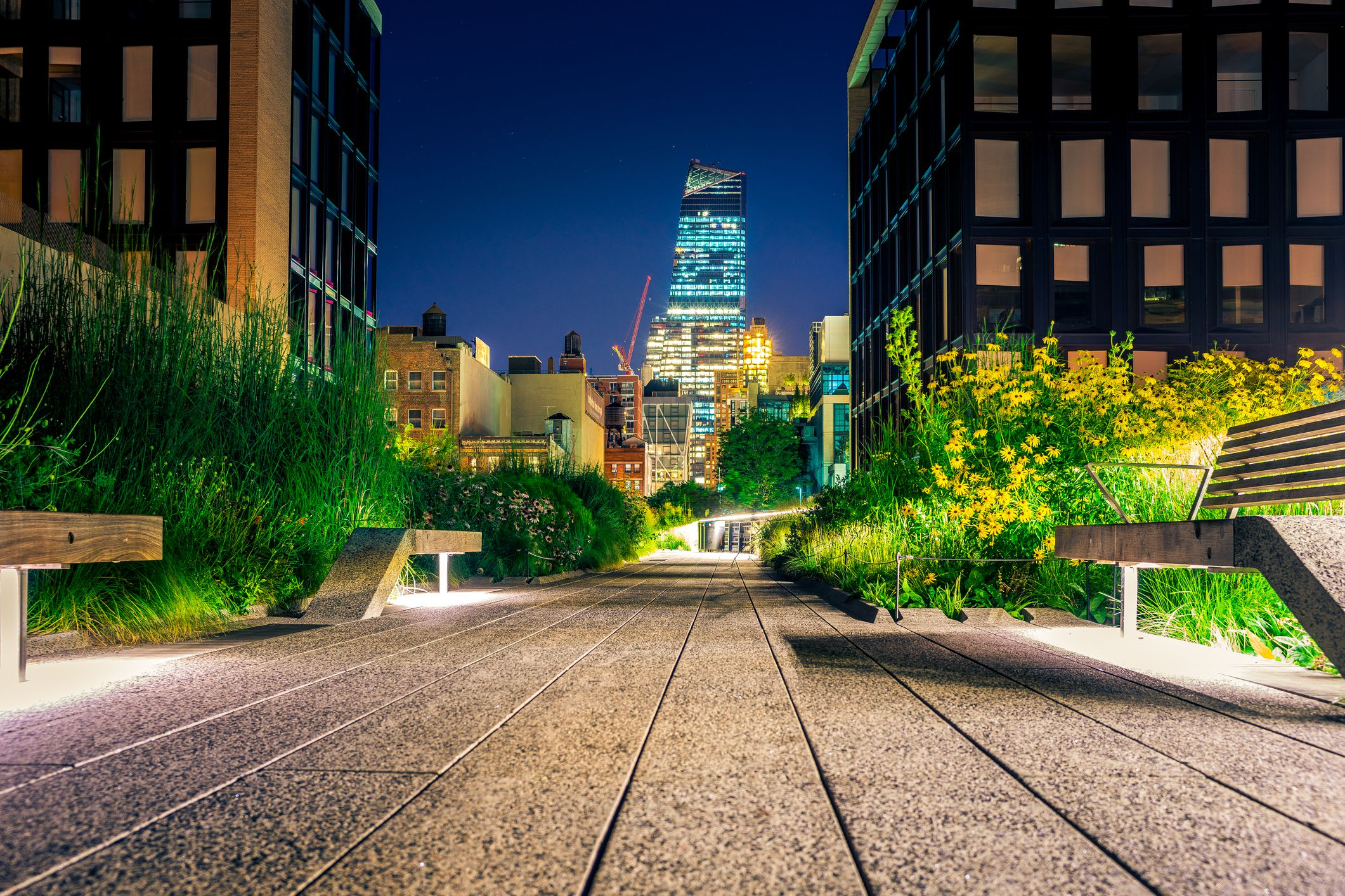 High Line Park at night, New York
