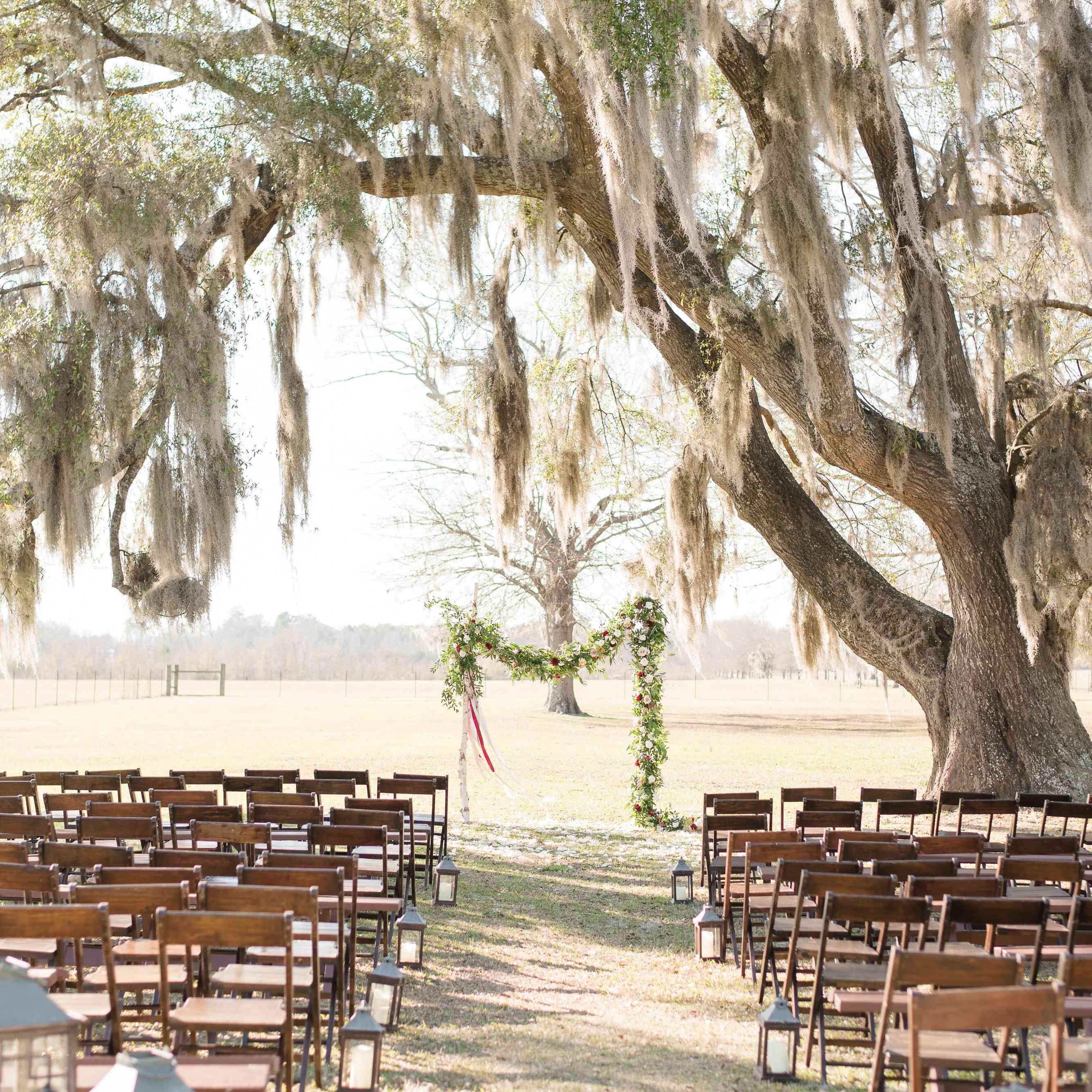 Lantern-lined ceremony aisle under large tree