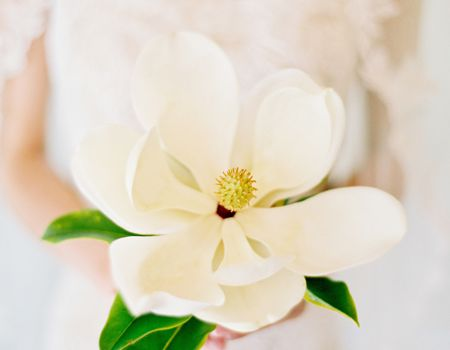 A Single Bloom White Magnolia Wedding Bouquet