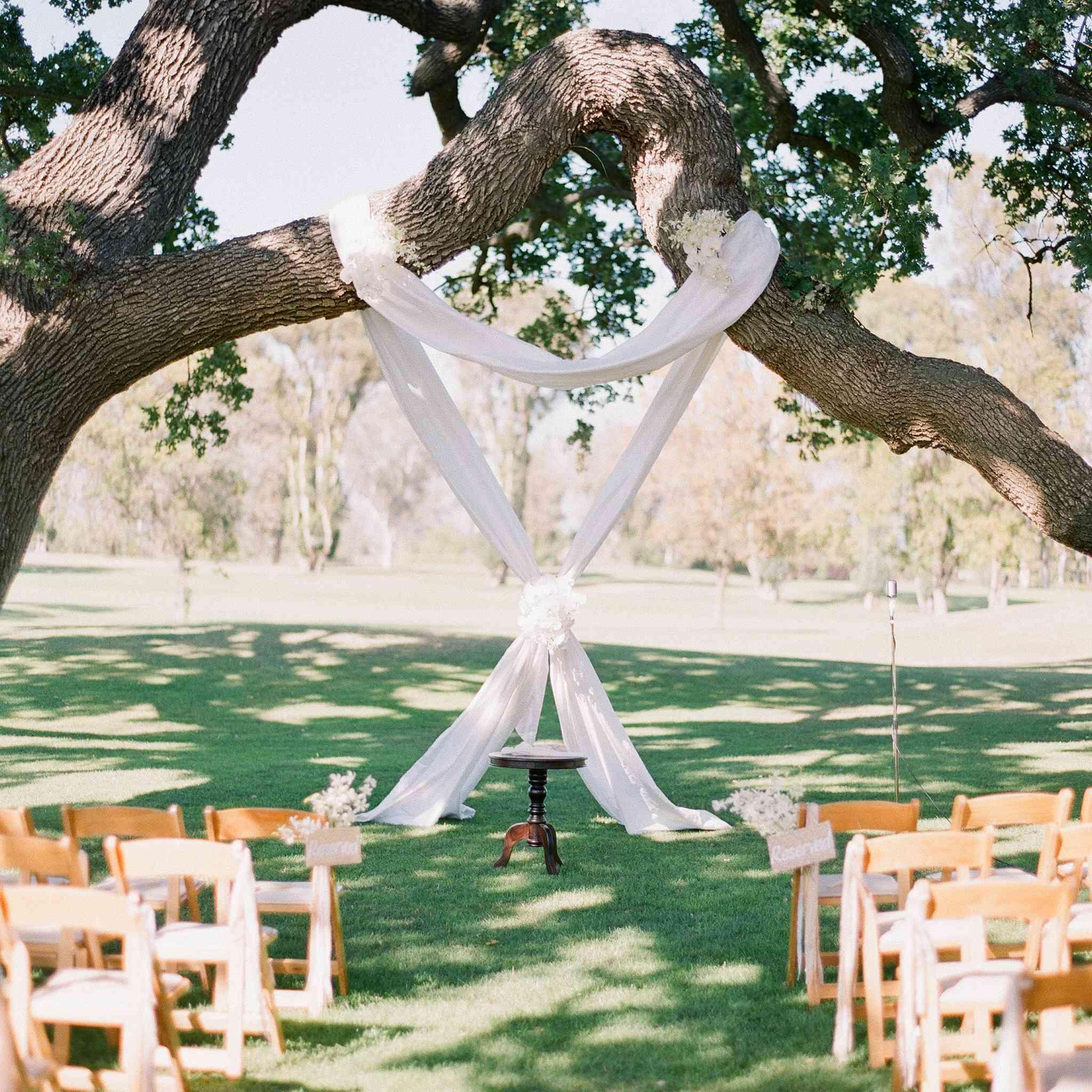 <p>A draped fabric altar on a tree.</p>