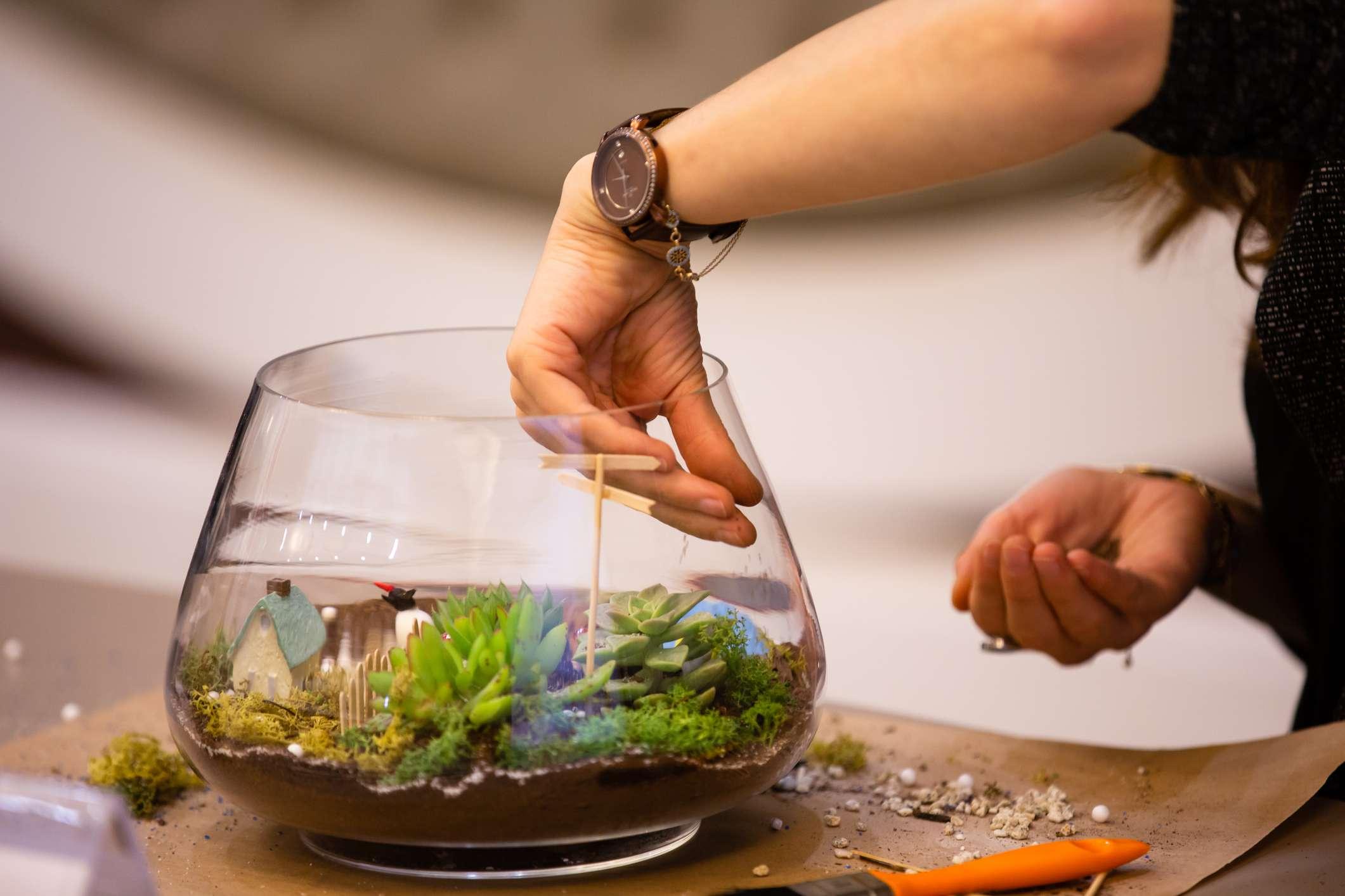 Person planting terrarium in a workshop
