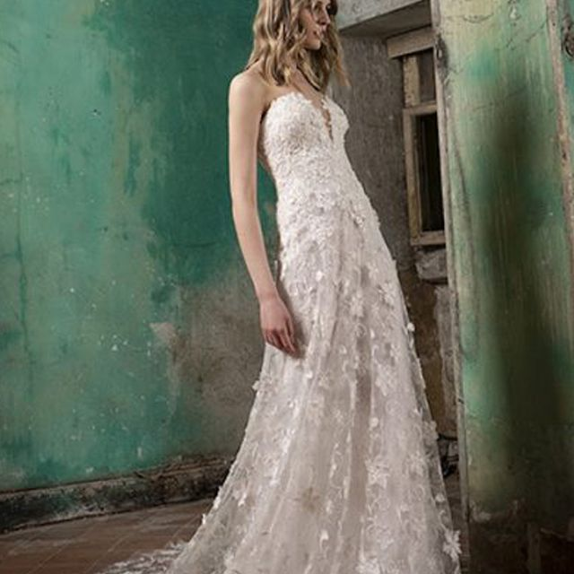 Tony Ward V-Neck Strapless A-Line Wedding Dress with Floral Appliques $3,900