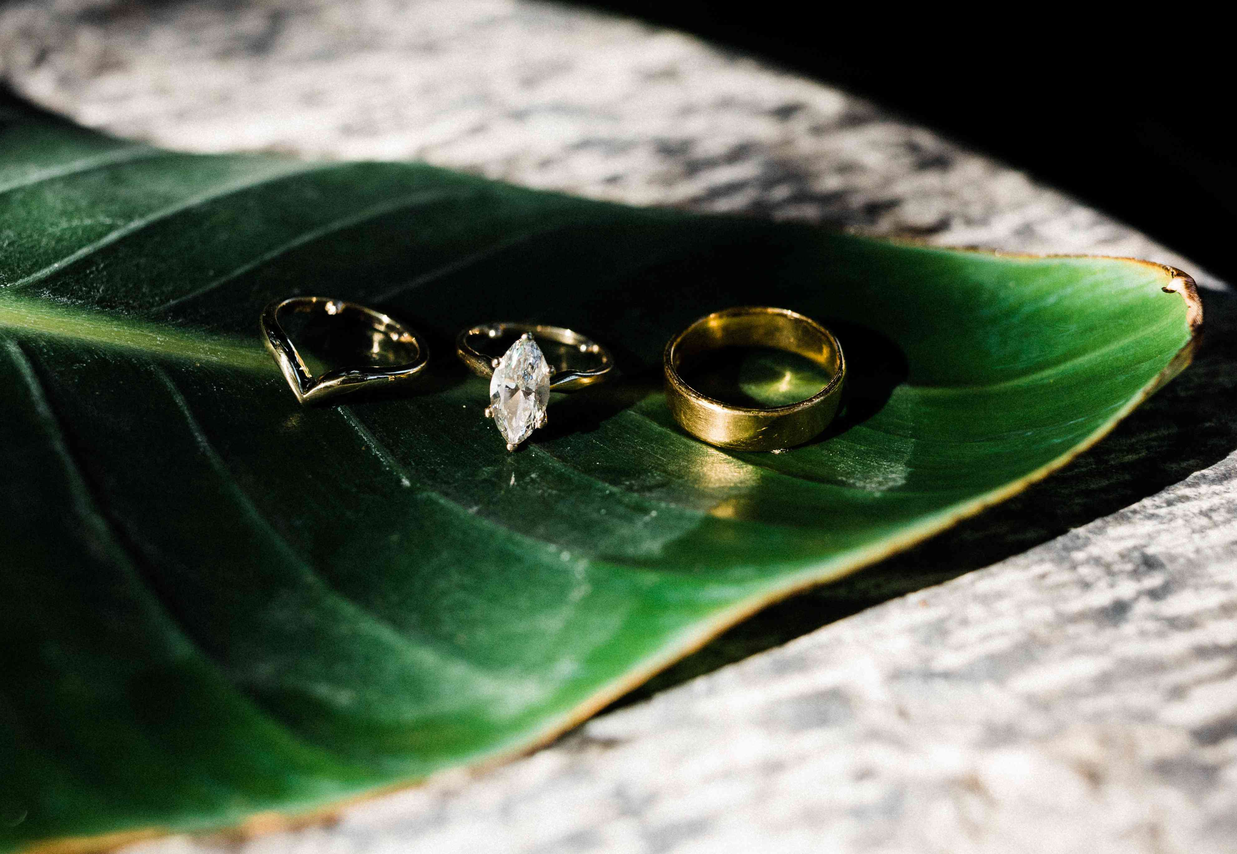 Wedding band, engagement ring, and wedding band resting on a leaf