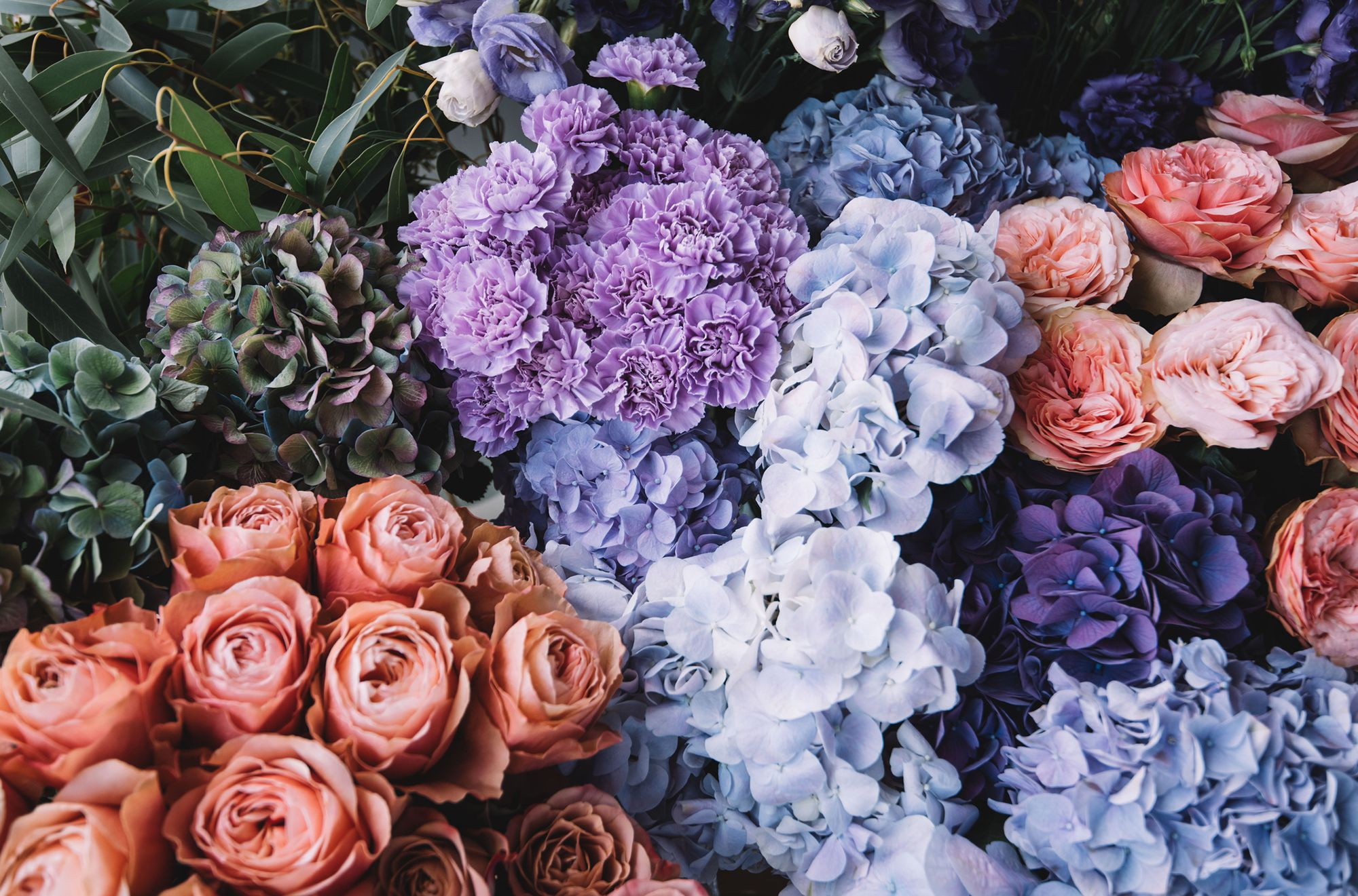 15 In Season July Flowers For Your Summer Wedding