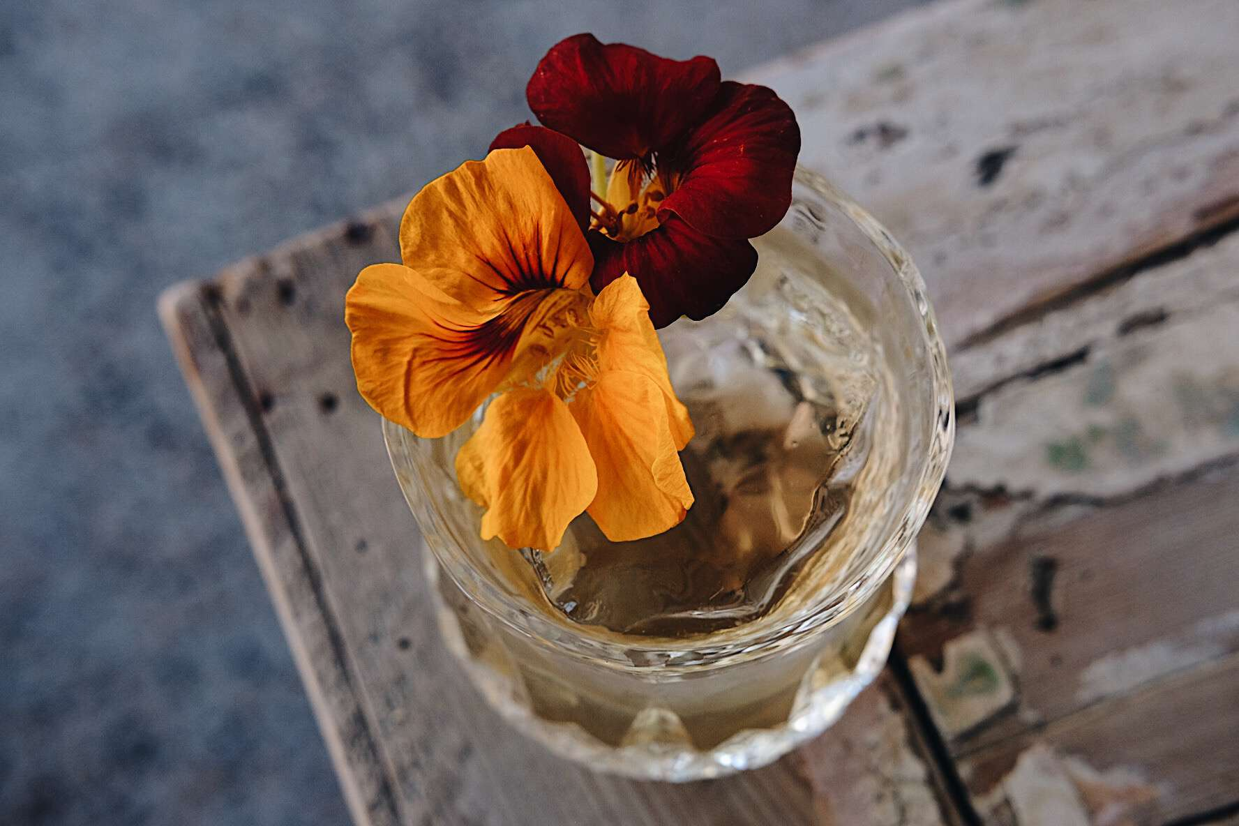 alcohol, signature cocktail, drink, glass, ice, beverage, bar, edible flowers, floral, highball glass
