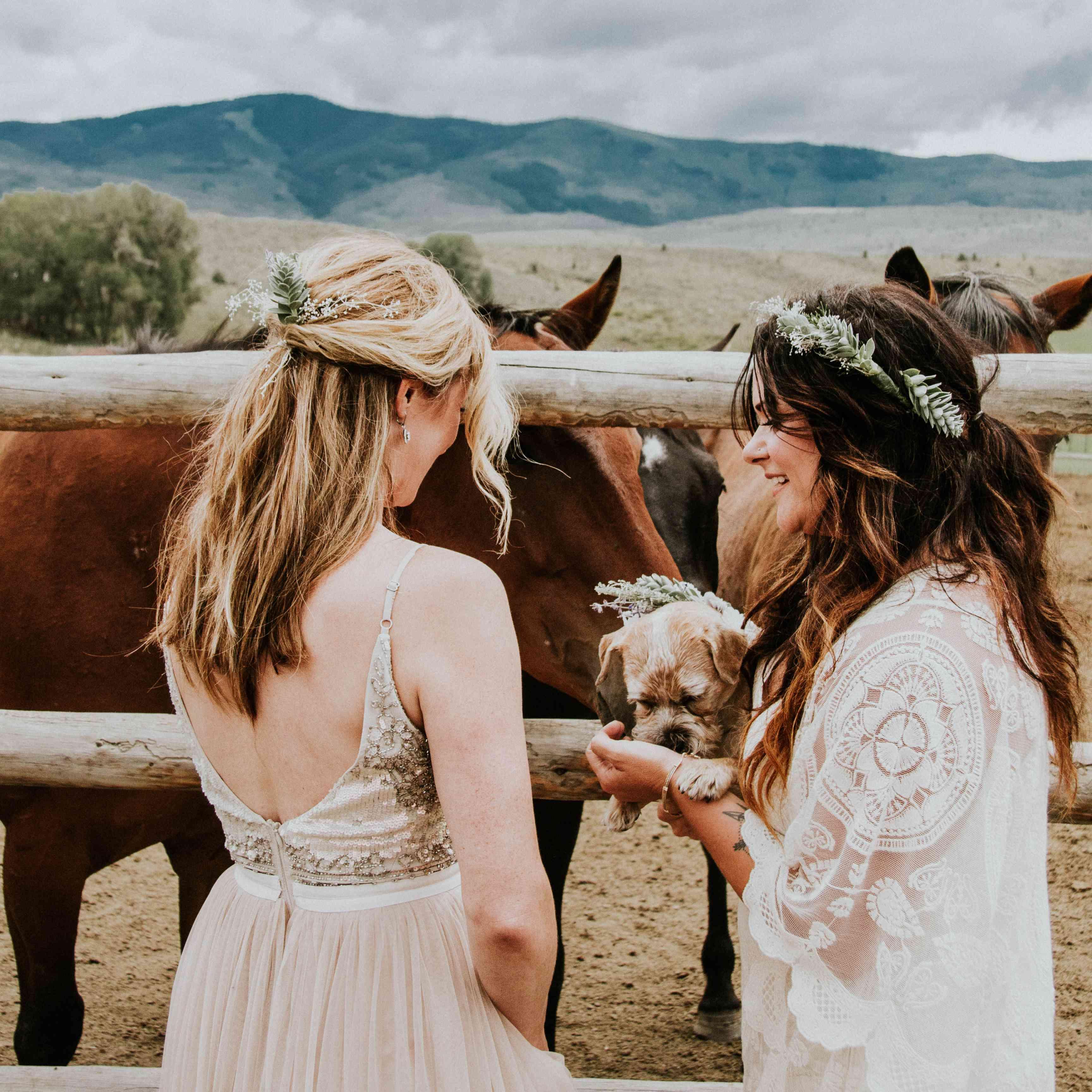 <p>Brides with horses</p>