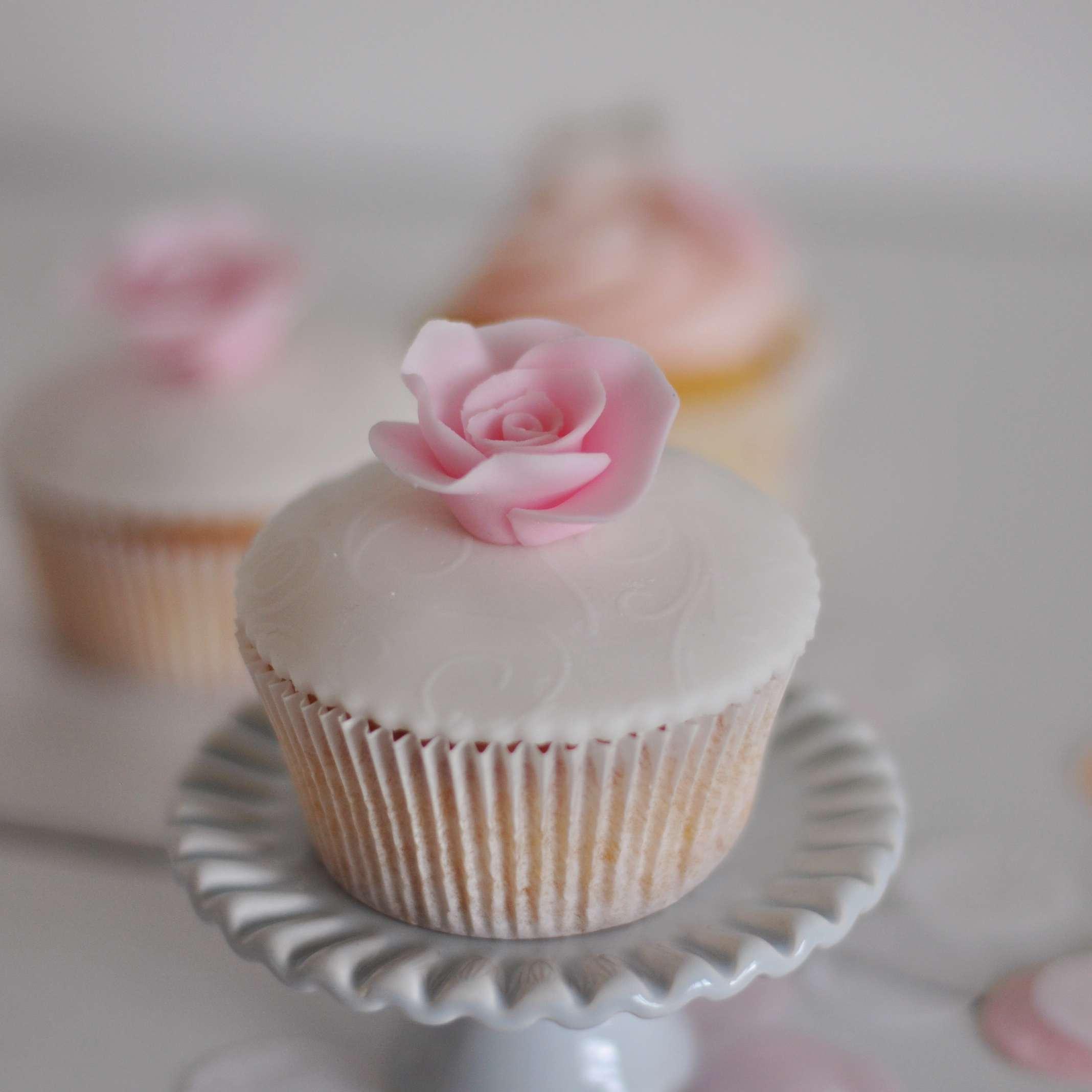 fondant topped cupcake
