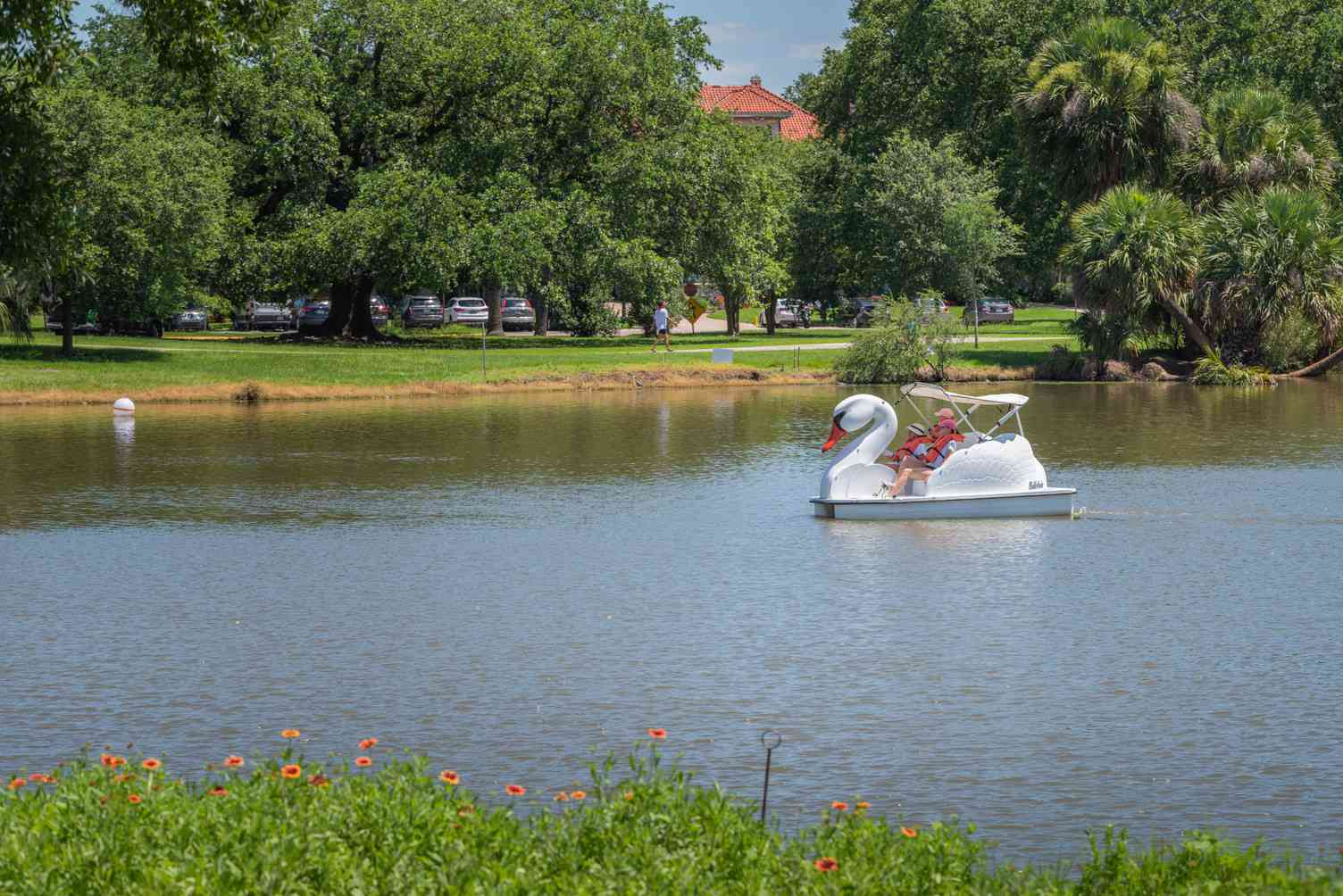 Swan paddle boat on the lake at City Park in New Orleans