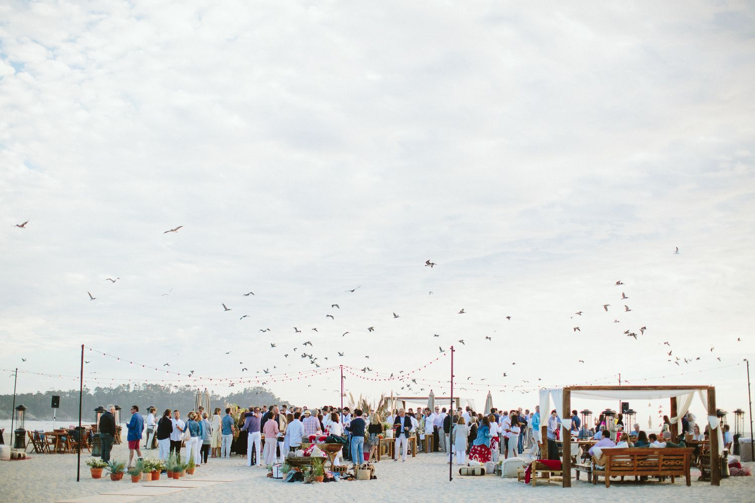 <p>welcome party on the beach</p><br><br>