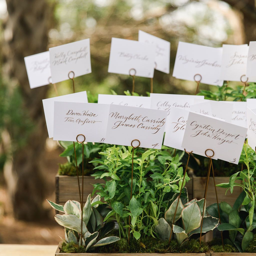 timeless southern wedding, plant escort cards