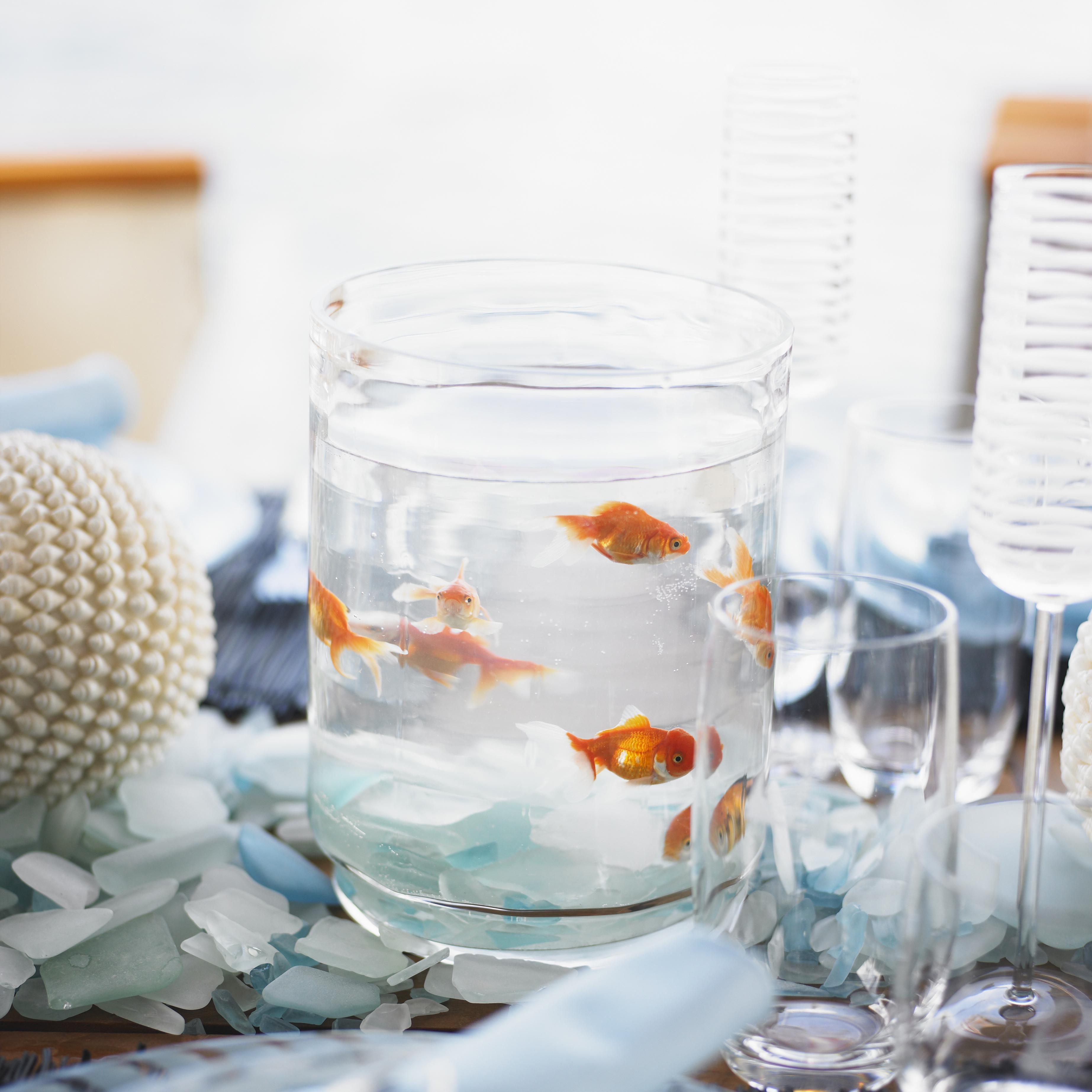 имеют поздравления на свадьбу рыбки они растут