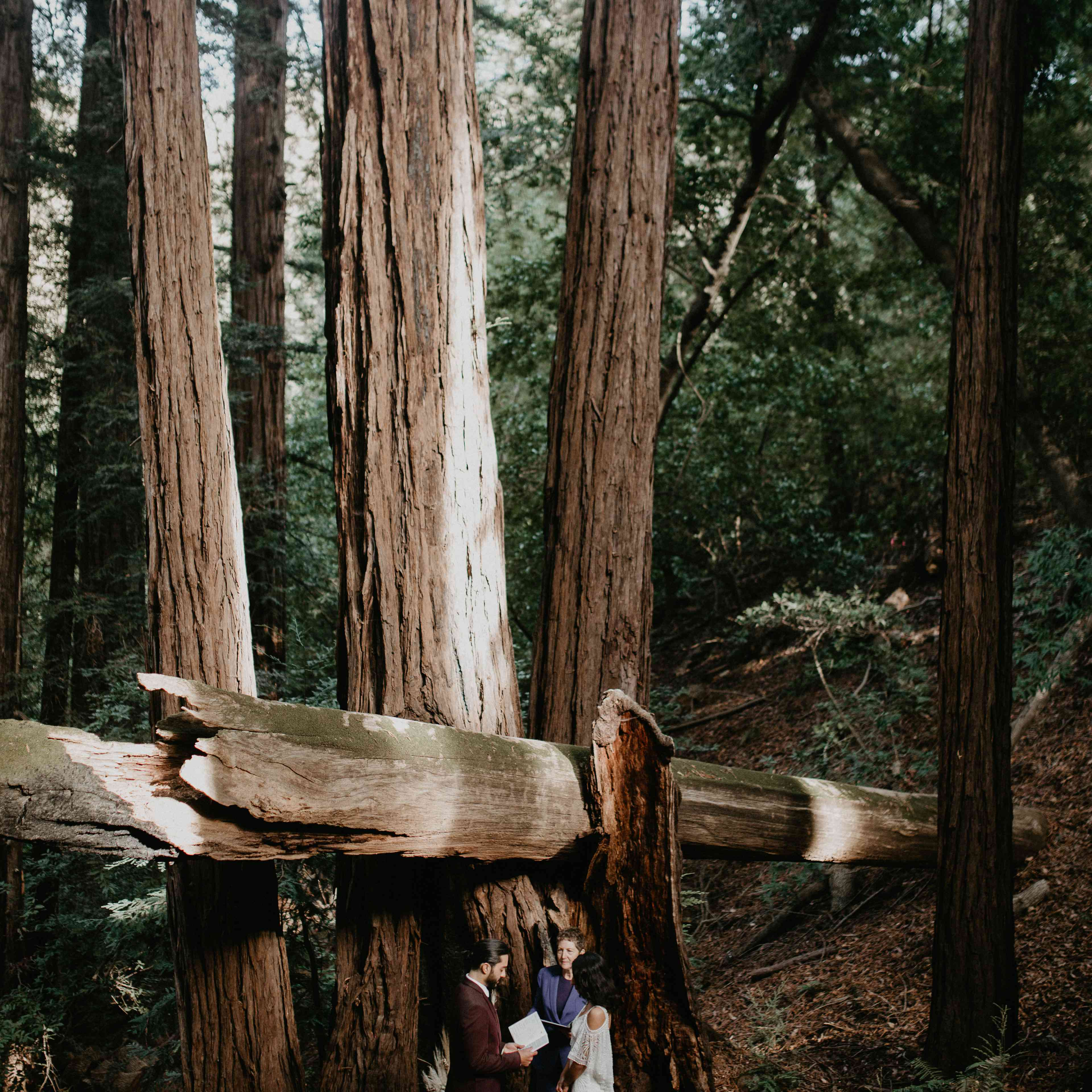 <p>bride groom and officiant in forest elopement</p><br><br>