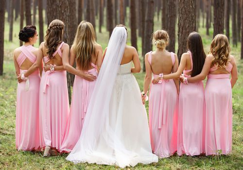 Bride in white with bridesmaids in pink from back