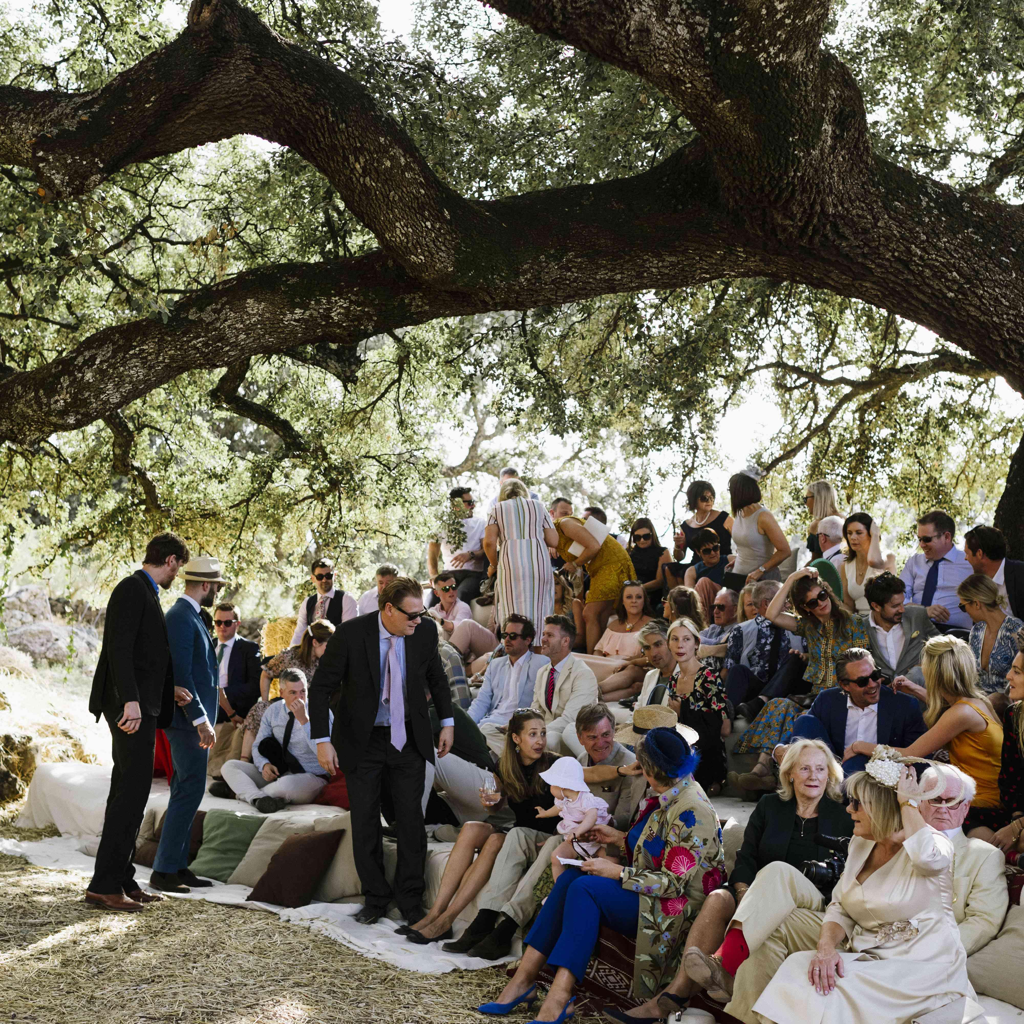 ceremony wedding guests
