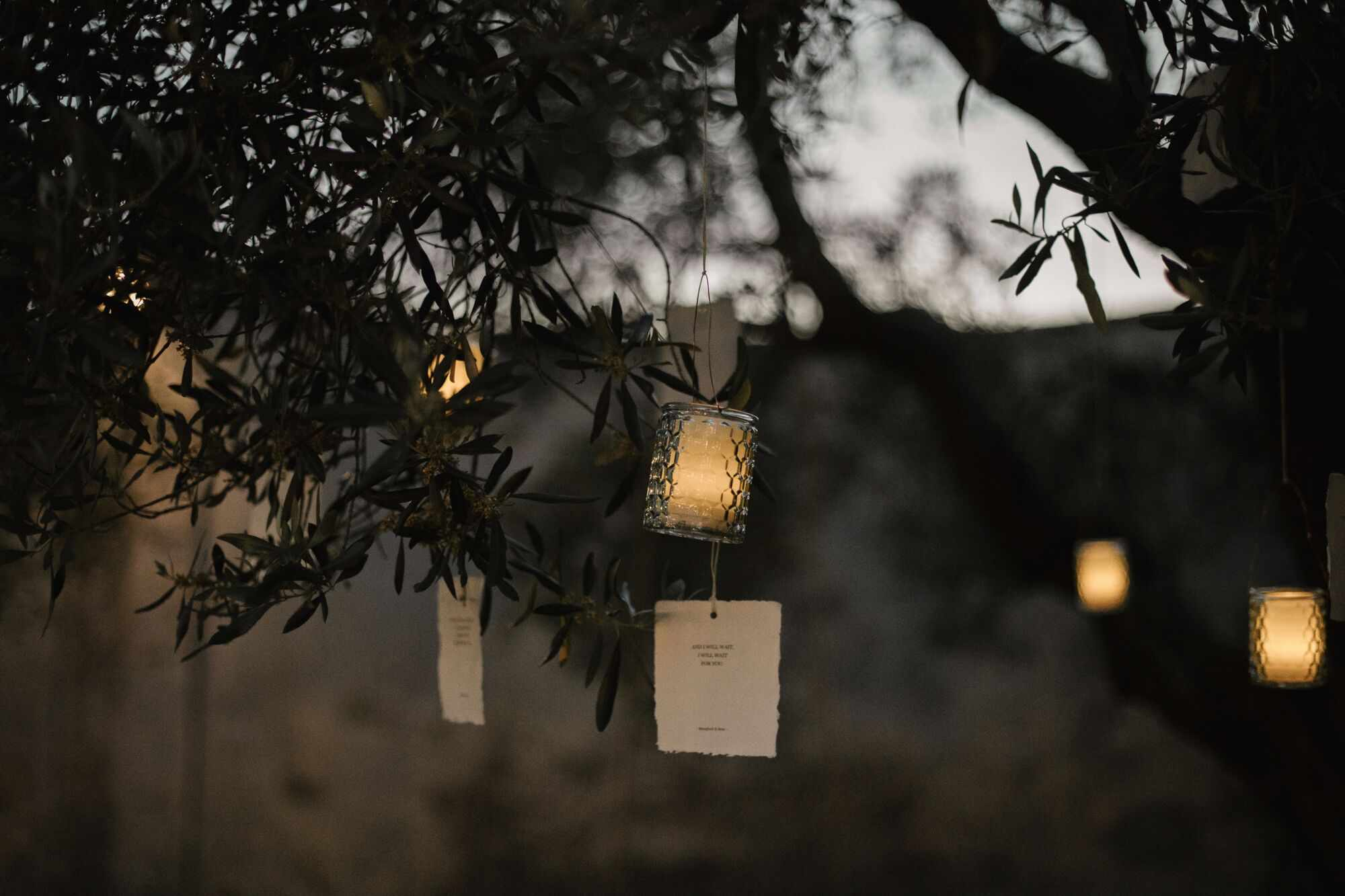 Love poems and candles hanging off of trees