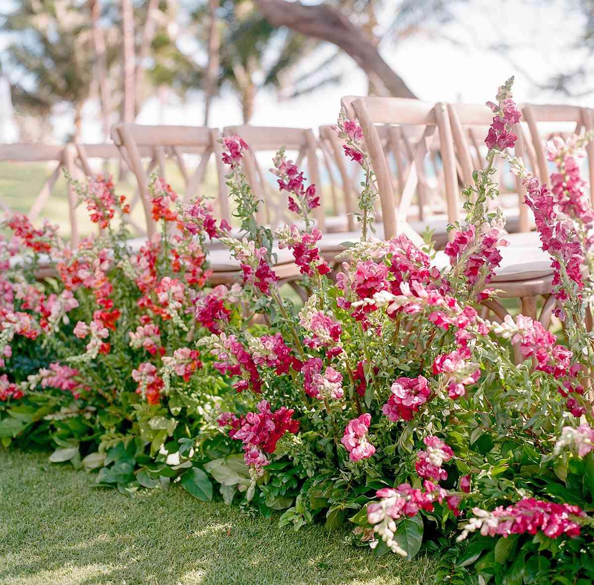 Long stem pink flowers