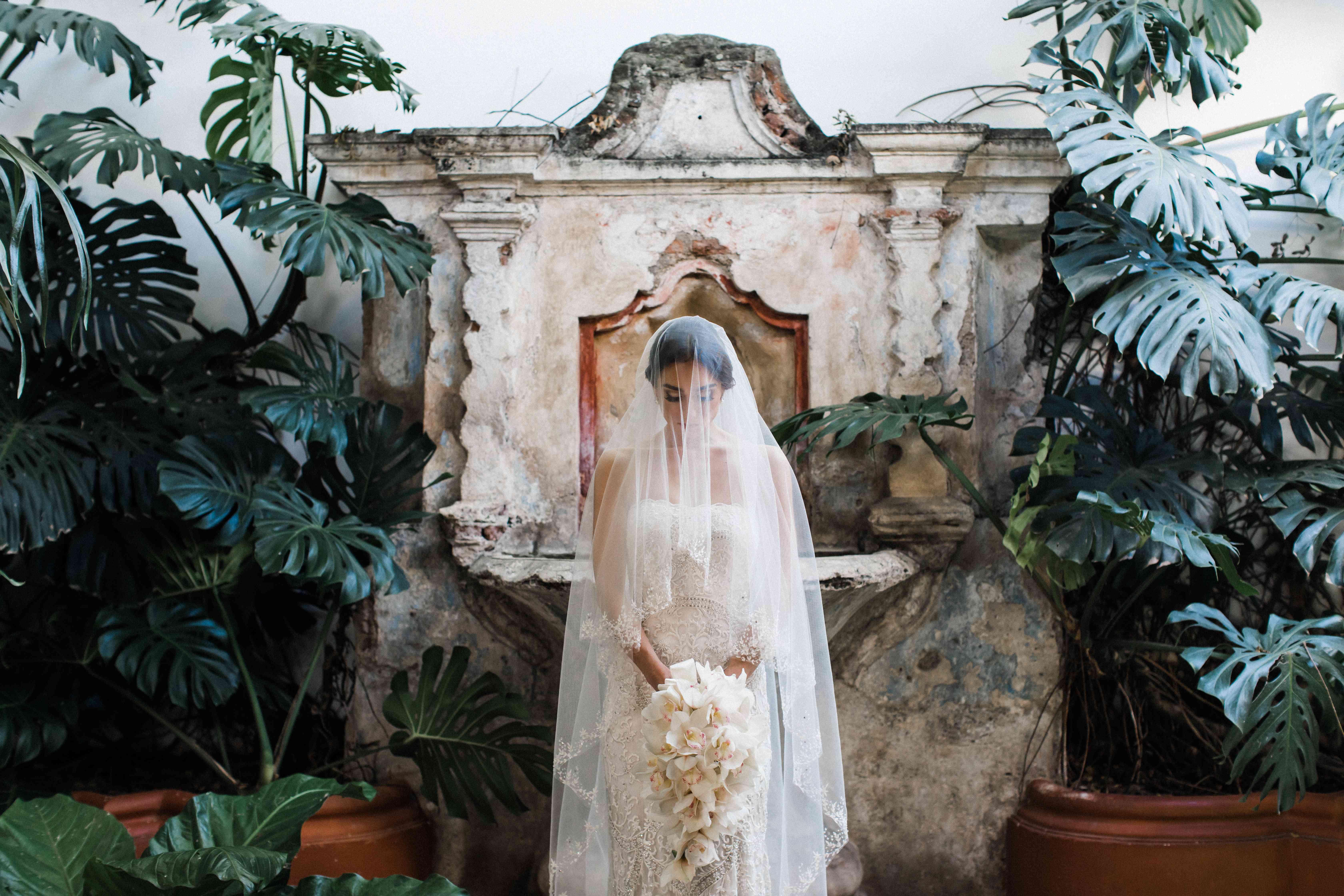 <p>bride in veil all white wedding bouquet</p><br><br>