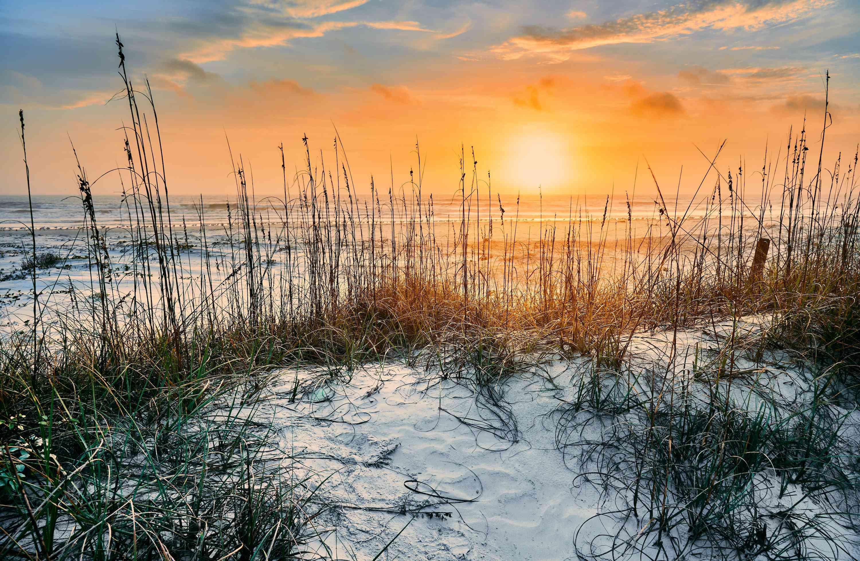 White sand beach at Cumberland Island National Seashore