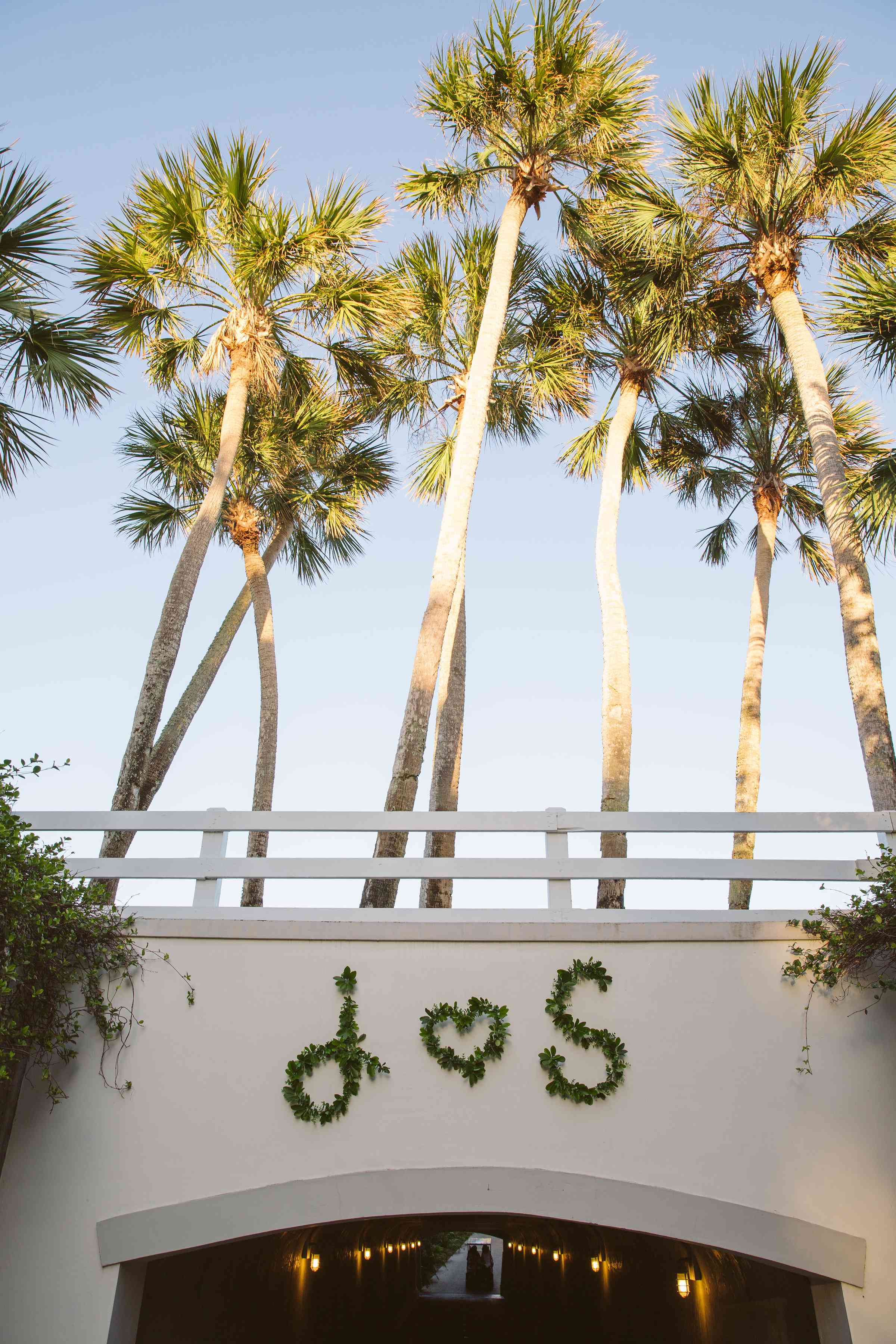 <p>initials in palm leaves</p><br><br>