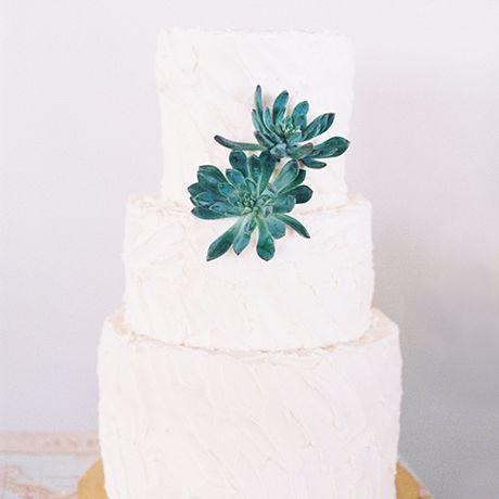 Cake succulent decor