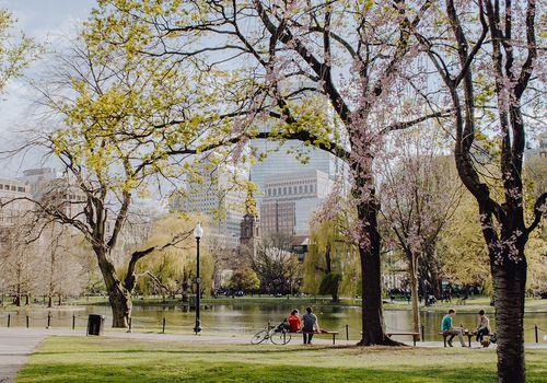 reservoir in central park
