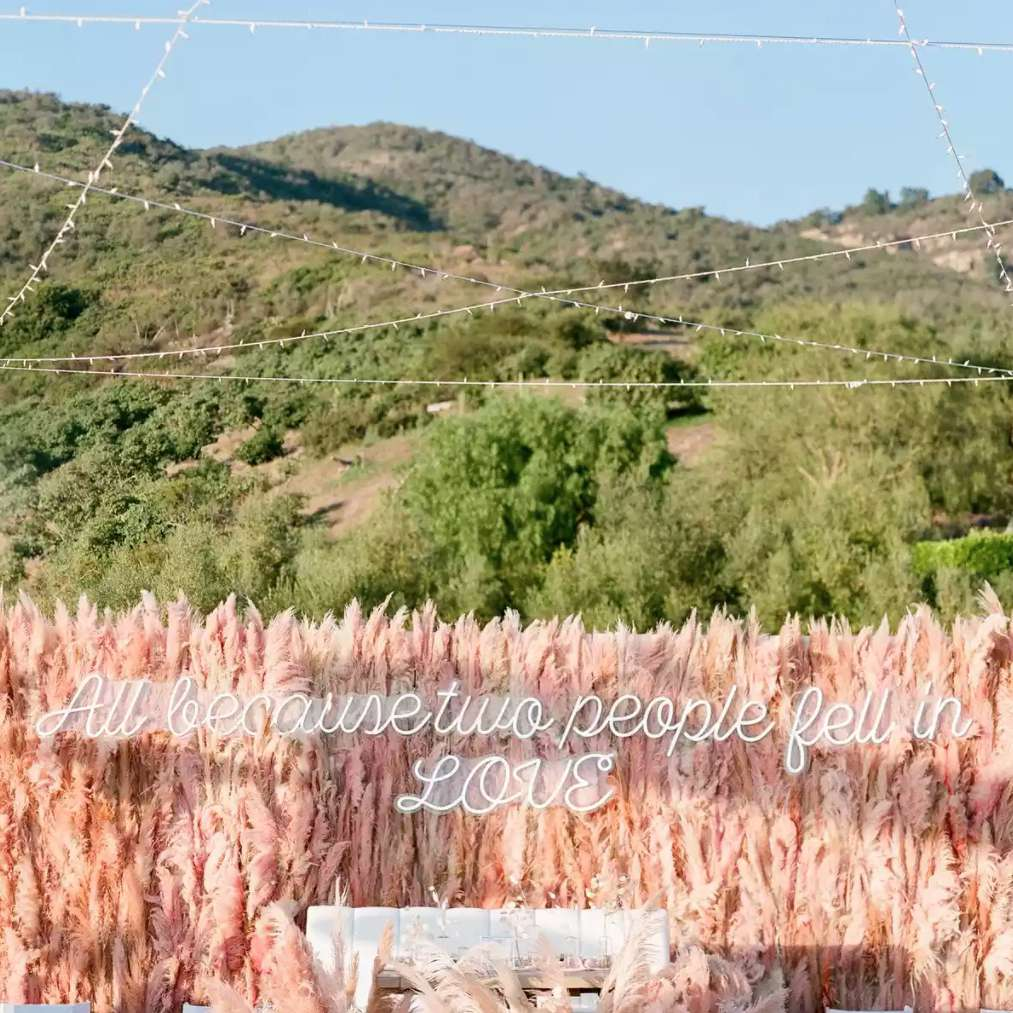 Neon sign on pink pampas grass wall