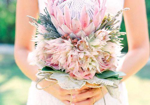 <p>Pink King Protea Bridal Bouquet</p>